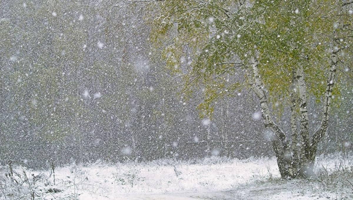 Сегодняшний день расскажет, когда выпадет снег