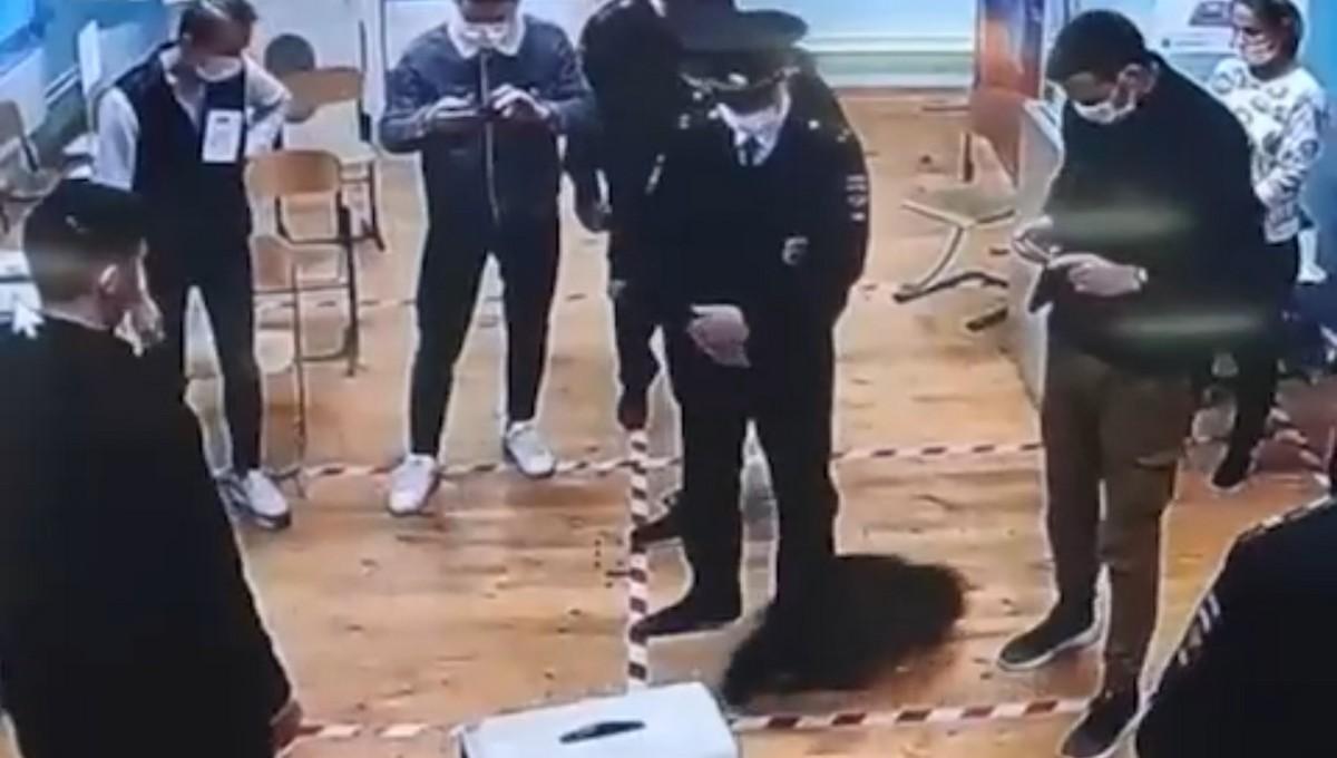 На избирательном участке ловили проворного енота