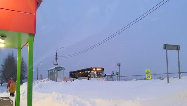 Последствия снегопада в Подмосковье будут устранять пять дней