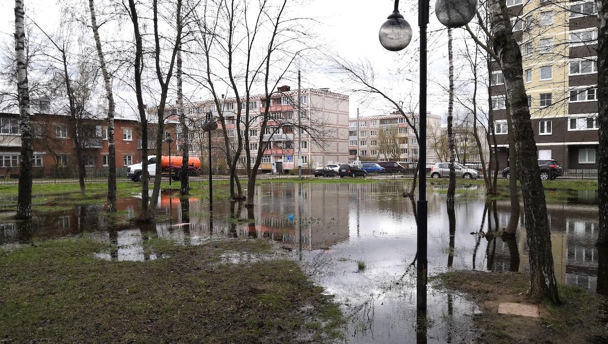 Хватит ли Серпухову сил содержать все свои парки?