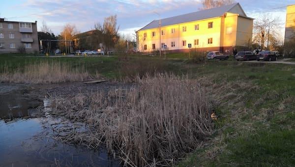 Четыре пруда под Серпуховом ждут перемены
