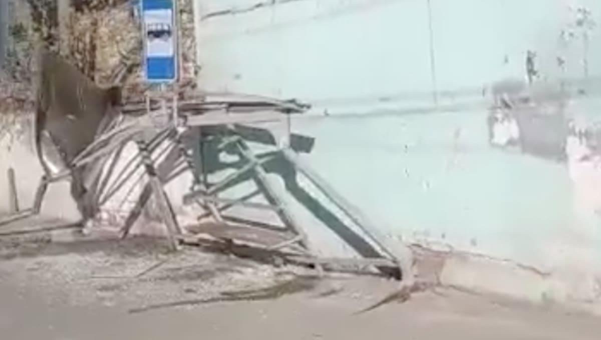Автобус без тормозов снес автобусную остановку в Серпухове
