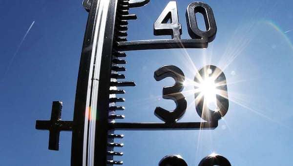 В Подмосковье в ближайшие сутки усилится жара