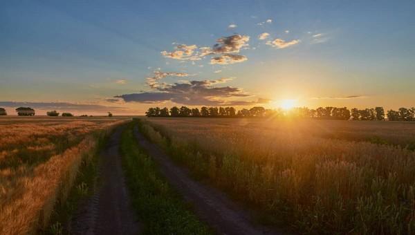 Жара и солнце задержатся в столичном регионе