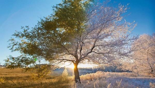 Погода на Покров честно расскажет, какими будут остаток осени и зима