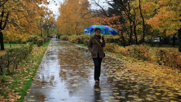 Неделю проливных дождей обещают синоптики жителям Подмосковья