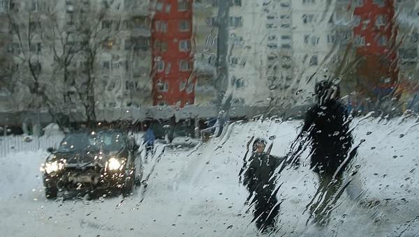 В ближайшие дни Подмосковье ждут проливные дожди