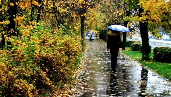 Сегодняшний день укажет погоду на осень