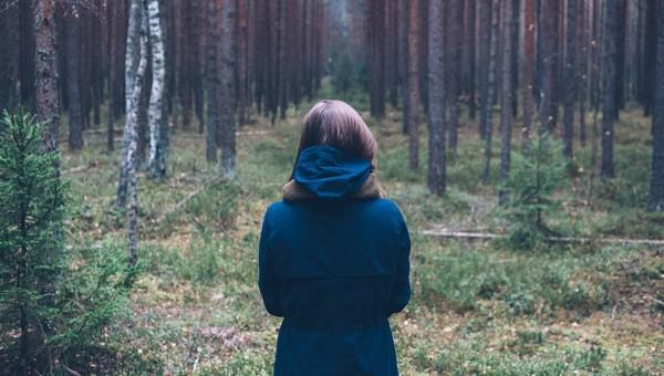 В лесах Подмосковья участились опасные встречи