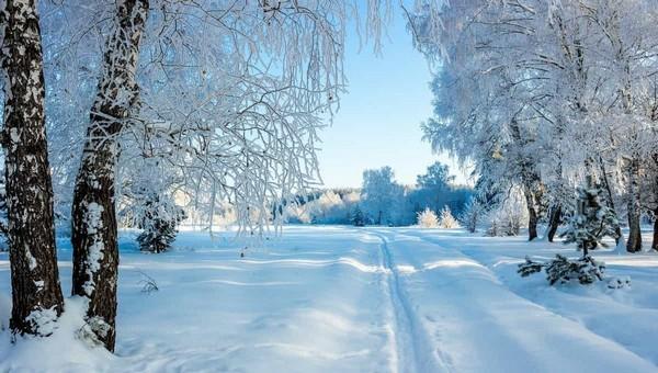 Когда зимняя погода вернется в Подмосковье?