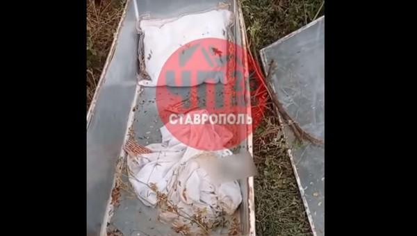 Гроб восьмилетнего ребенка был найден в лесу