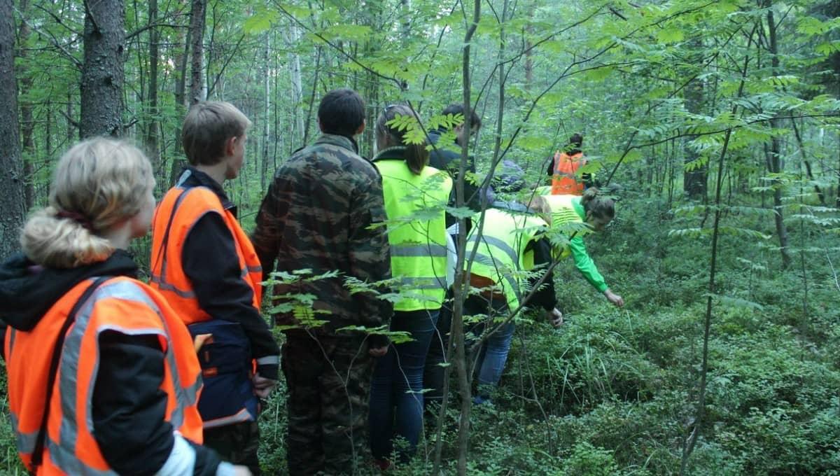 Поиски пенсионерки в лесу под Серпуховом продолжаются вторые сутки
