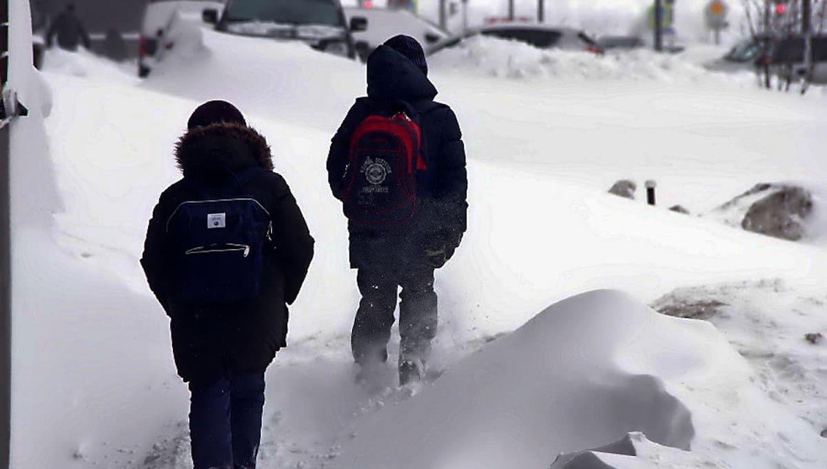 Кондуктор выставила из автобуса на мороз девятилетних мальчиков