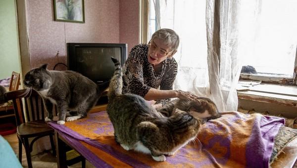 Для хозяев животных, проживающих в квартирах, готовят новый штраф
