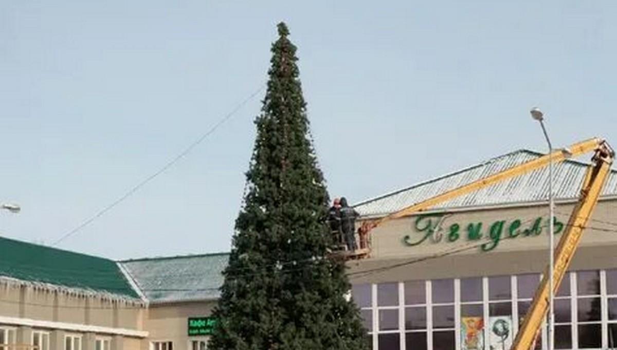 В одном из российских регионов власти решили нарядить елку