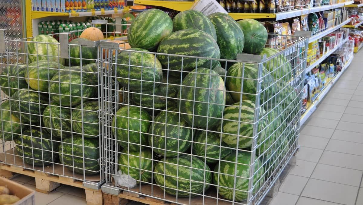 Стало известно, в каком супермаркете куплен «арбуз-убийца»