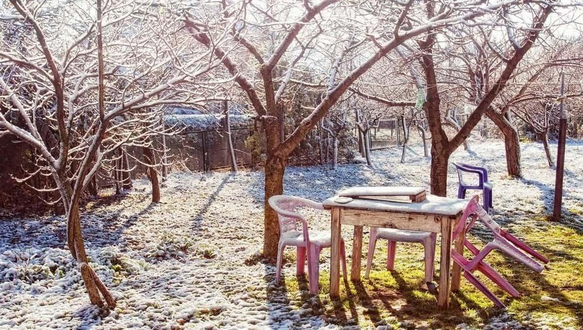 Пять дел, которые вам надо завершить в огороде до холодов