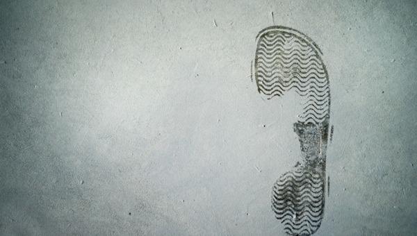 Разъяренная учительница музыки в Подмосковье швырнула в ученика ботинок