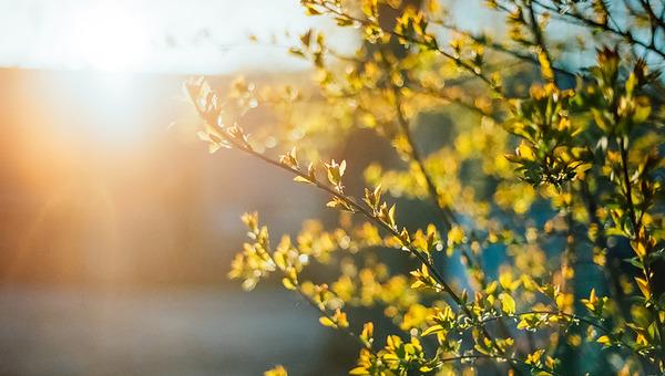 В мае солнце будет опасным