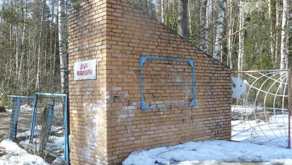 В Подмосковье в заброшенном лагере найдено тело ребенка