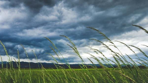 В Подмосковье кроме дождей с 19 по 21 июля существует еще одна опасность