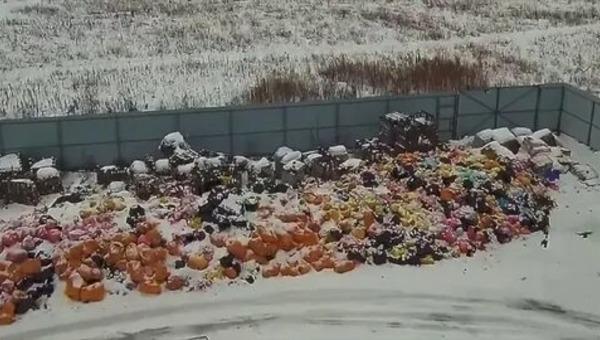 В Подмосковье медицинские отходы жгут под открытым небом