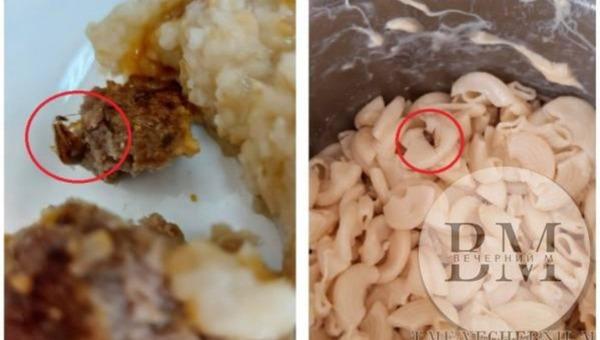 В российском детском саду детей кормят тараканами
