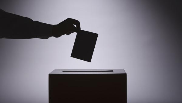 Где выборы-2021 пройдут удаленно?