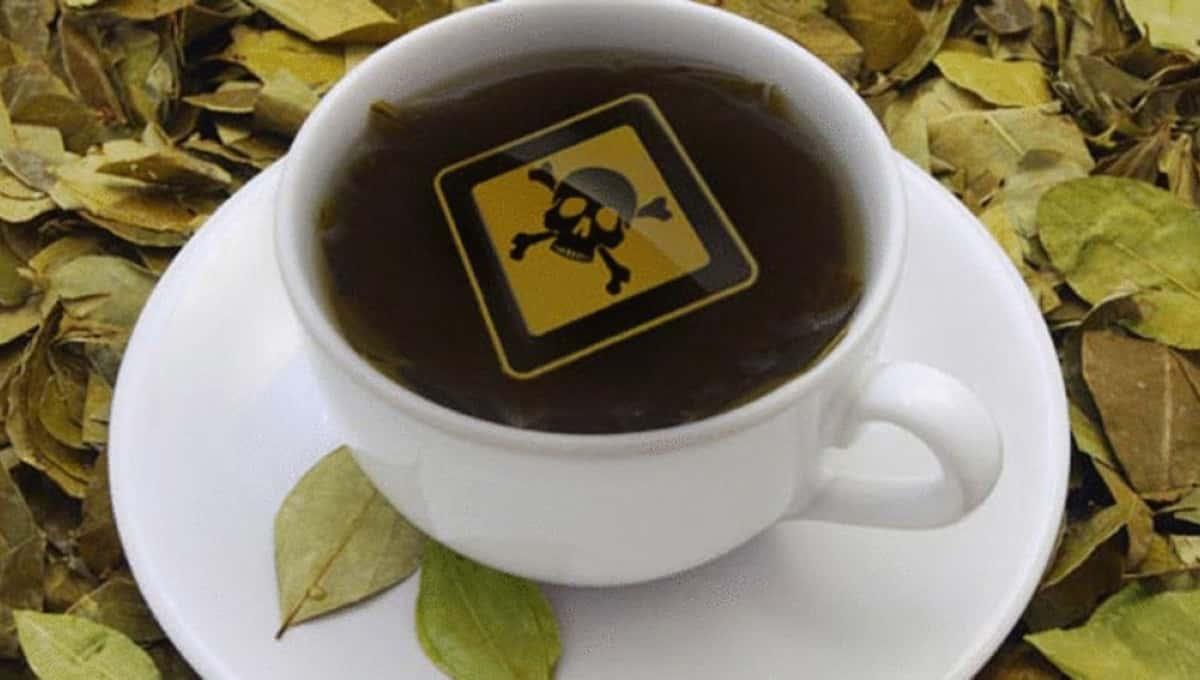 Употребление чая несет риски для жизни