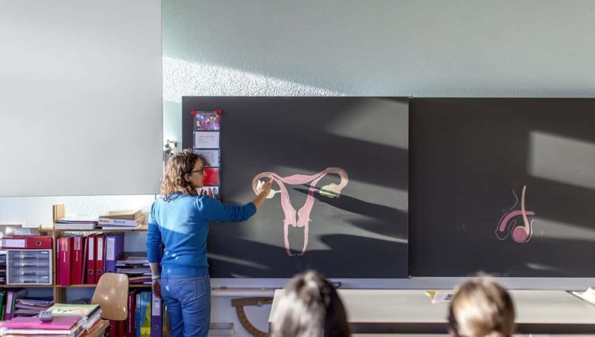 Школьники рассказали о полезных школьных предметах