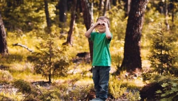 В лесах России стало опасно