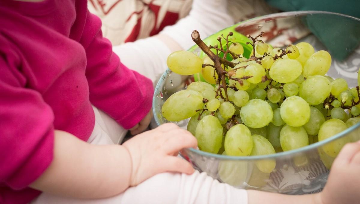Полуторагодовалая девочка умерла после того, как поела виноград