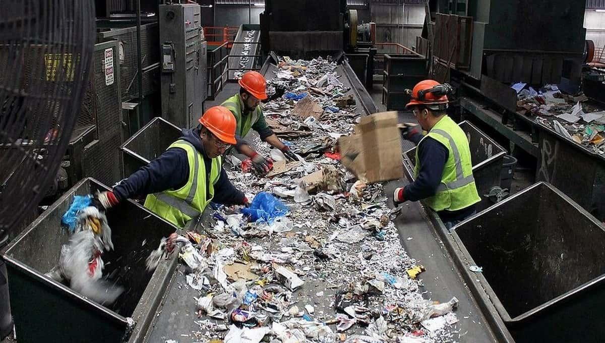 Рабочие станции сортировки мусора в Подмосковье сделали страшную находку
