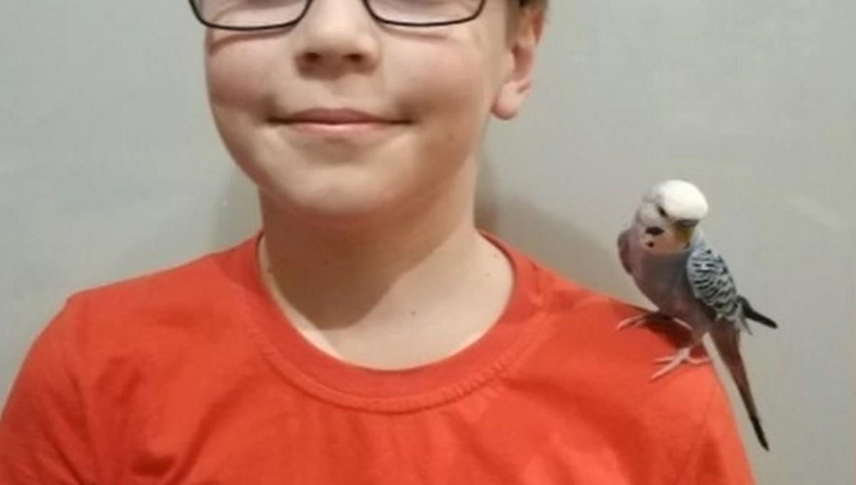Чудесное возвращение блудного попугайчика произошло в российском городе