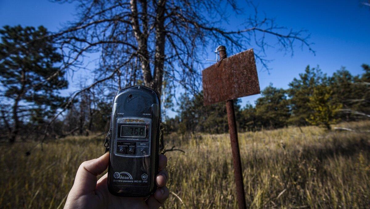 В Подмосковье нашли радиоактивный лес