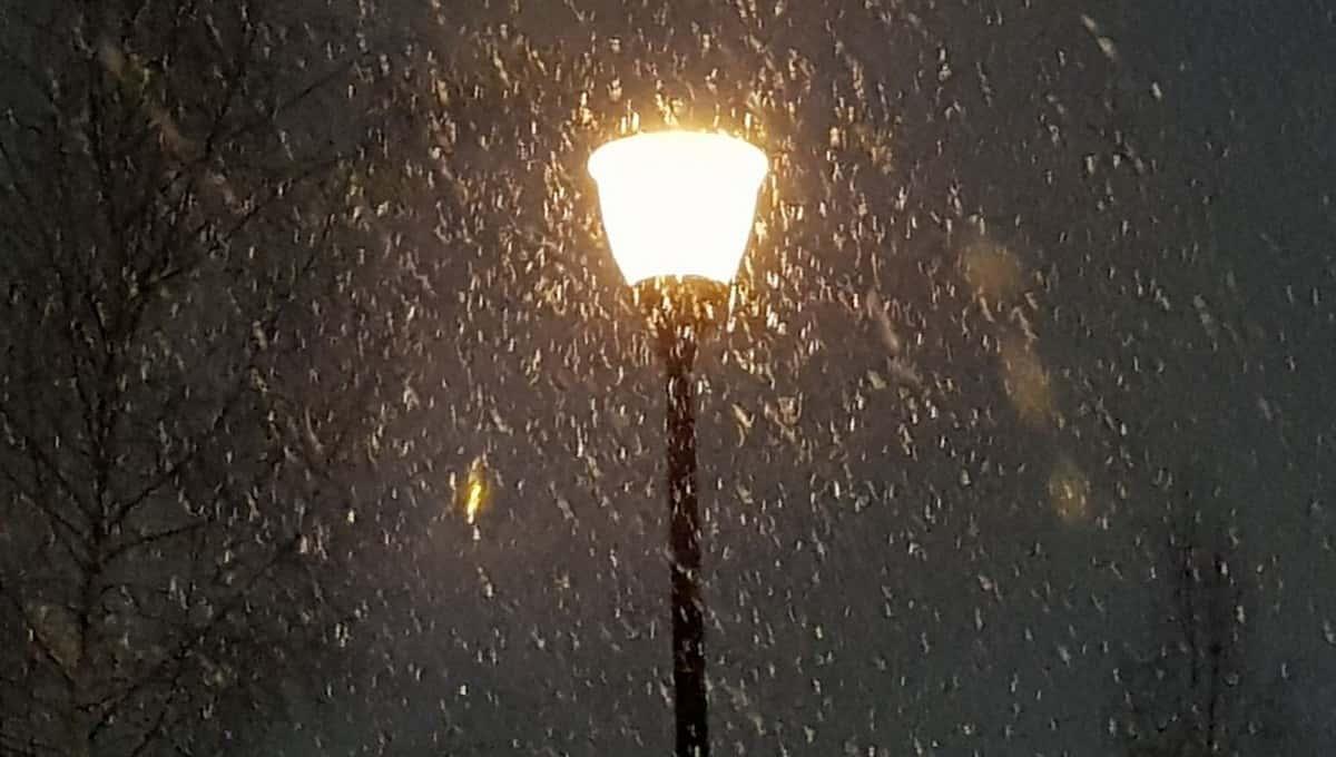 Этой ночью в Подмосковье ожидается снег