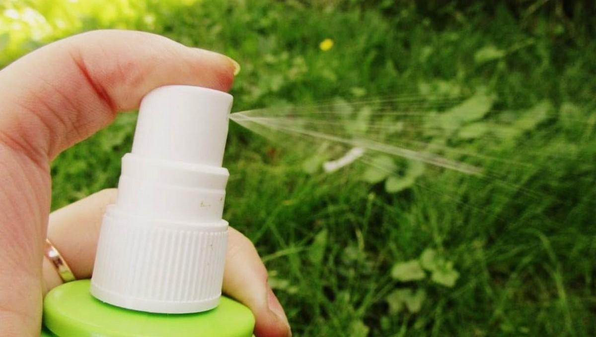 Названы средства от комаров, которые не имеют госрегистрации
