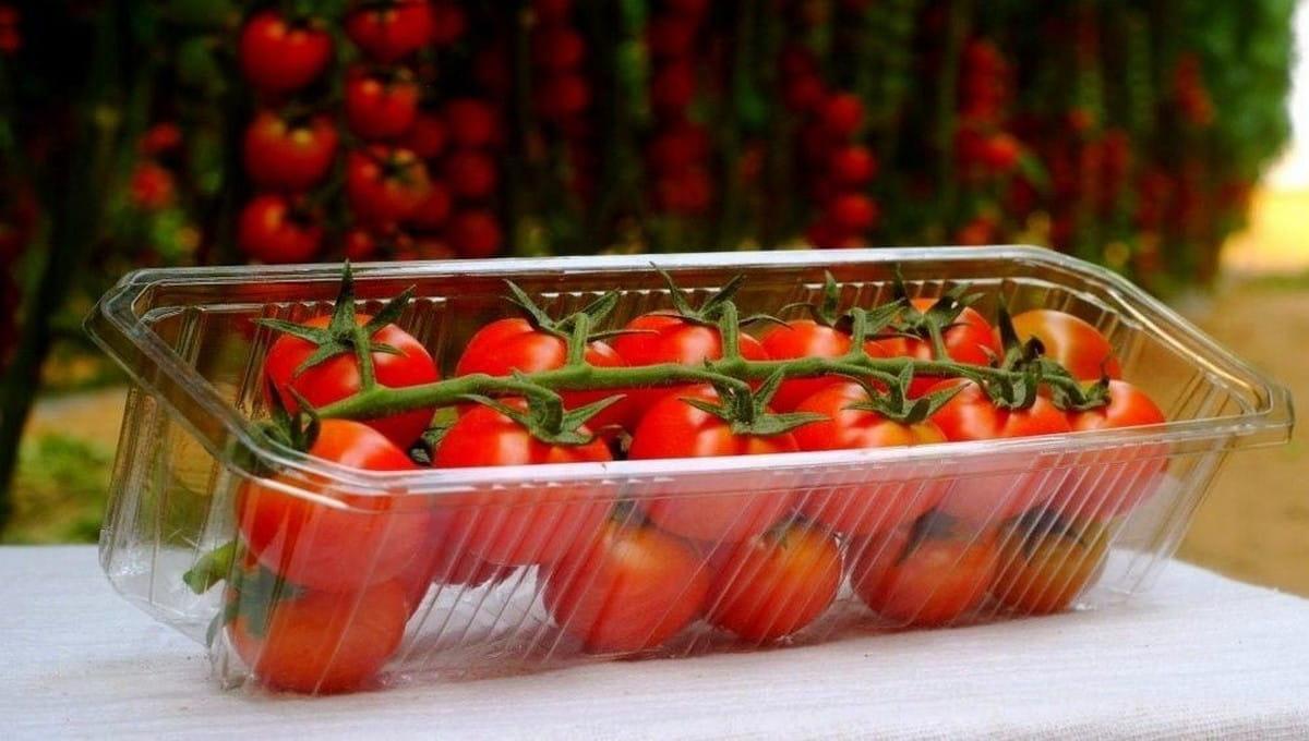 Загадочное послание найдено в упаковке томатов из Подмосковья